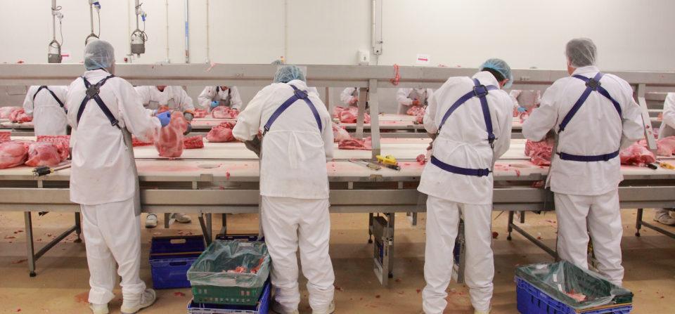 Désossage et Découpeurs de viande